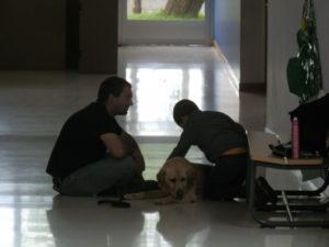 Terapia con Cans - O Rocío